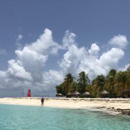 Caribbean Sailing Charters | Palm Island The Grenadines