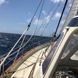 Caribbean Sailing Charters | Open water sailing