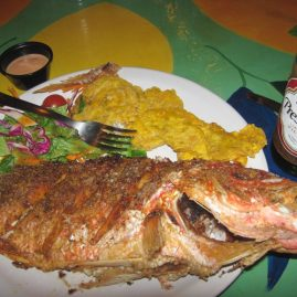 Caribbean Sailing Charters | Mama's fish dinner in British Virgin Islands