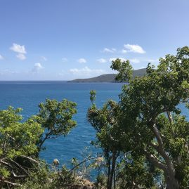 Caribbean Sailing Charters | Saint Thomas USVI