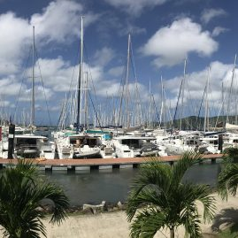 Caribbean Sailing Charters | Martinique harbor