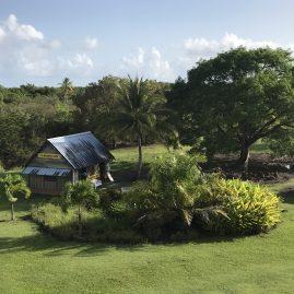 Caribbean Sailing Charters | Martinique shore excursions