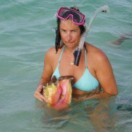 Caribbean Sailing Charters | Beautiful conch