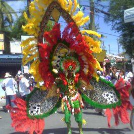 Caribbean Sailing Charters | British Virgin Islands Carnival man